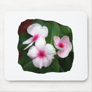 Purple Pinwheel Flowers Photograph Mouse Pad