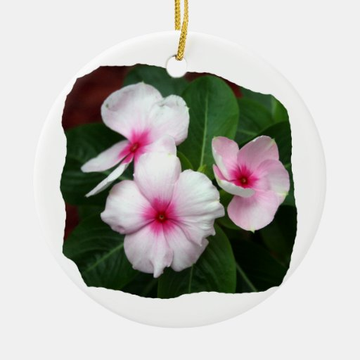 Purple Pinwheel Flowers Photograph Christmas Ornaments