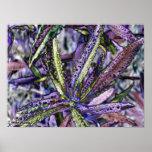 purple plant print