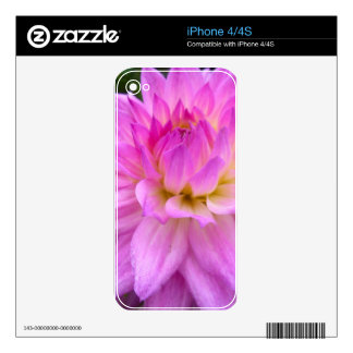 Purple Pleasure Decal For iPhone 4S