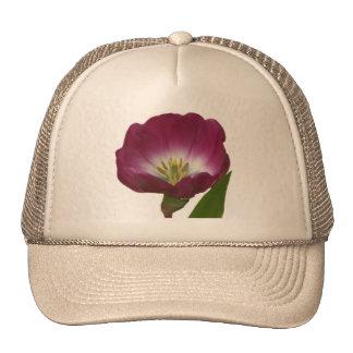 Purple Plum Tulip Mesh Hat