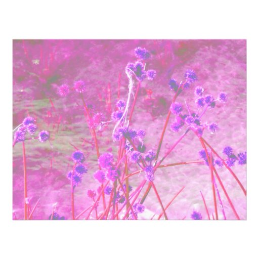 Purple pond plants background letterhead