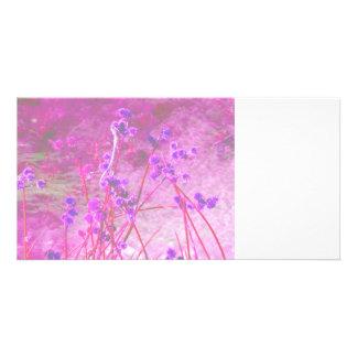Purple pond plants background photo card