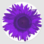 Purple Pop Art Flower Sticker