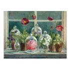 Purple Poppies on a Windowsill Postcard