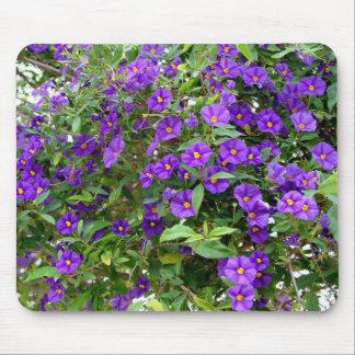 Purple Potato Bush Flowers Mousepad