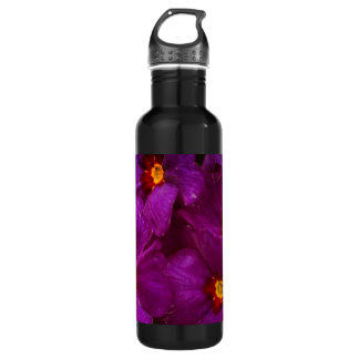 Purple Primula Flowers 24oz Water Bottle