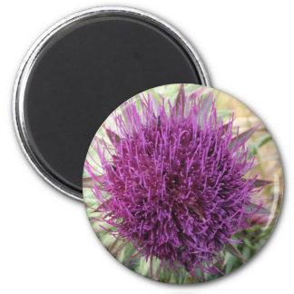 purple radiating 2 inch round magnet