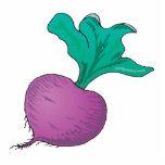 purple radish cut outs