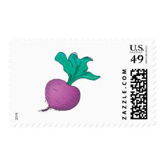 purple radish postage stamp
