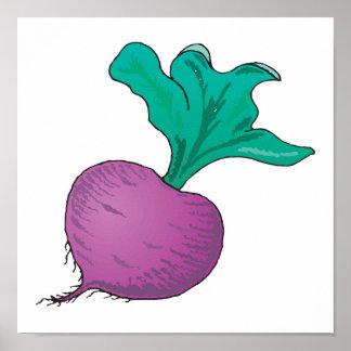 purple radish poster