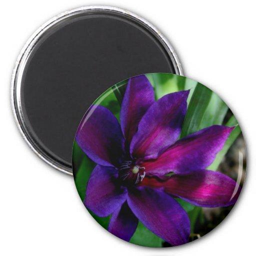Purple Rain 2 Inch Round Magnet