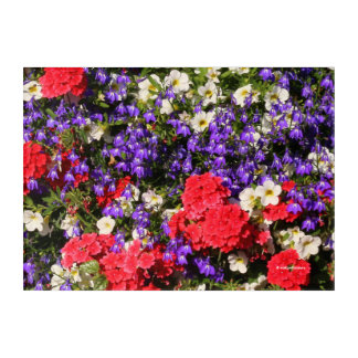 Purple, Red, and White Annual Flowers Acrylic Wall Art