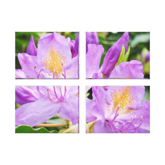 Purple Rhododendrons Canvas prints Floral
