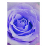 Purple Rose Background Customized Lavender Blank Poster