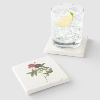 purple rose by Redouté Stone Coaster