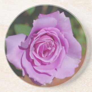 Purple Rose Coasters