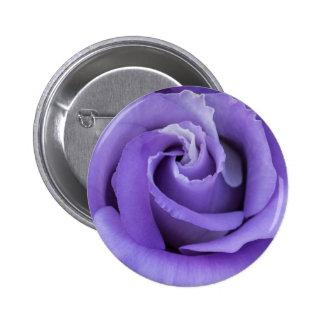 Purple Rose Flower Button