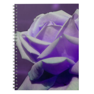 Purple Rose Flower Nature Notebook