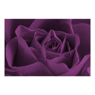 Purple Rose Gothic Poster