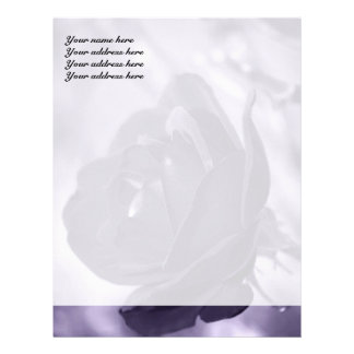 Purple Rose Letterhead Design