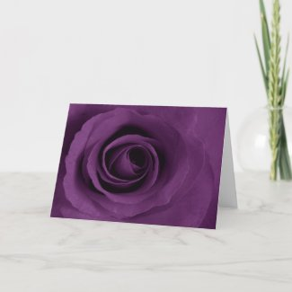 Purple Rose of Artsy Greeting Cards