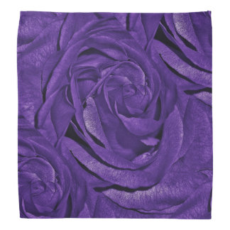 Purple Rose of Fibro Bandana