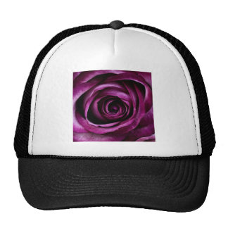 Purple Rose Trucker Hat