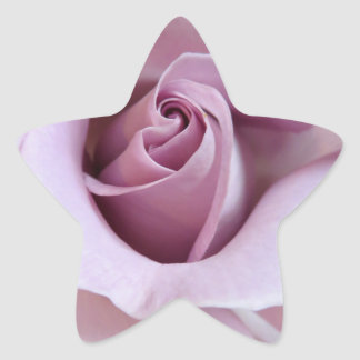 Purple Rose Wedding Photo Star Sticker