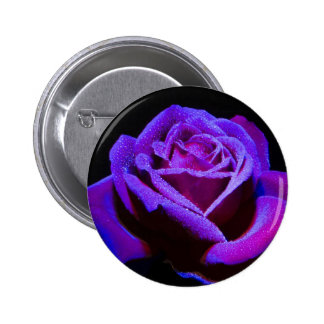 Purple Rose With Water Drops on Black Background Button