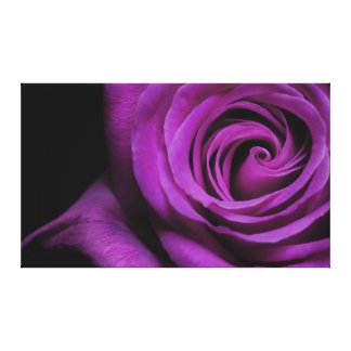 Purple Rose Wrapped Canvas print