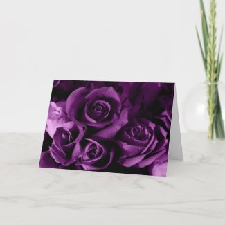 Purple Roses card card