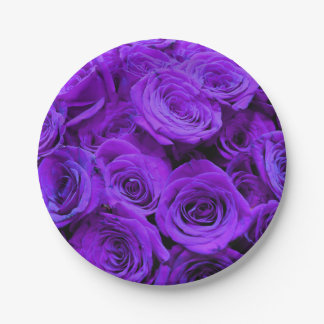 Purple Roses Paper Plate