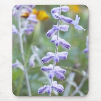 Purple Russian Sage -Pervoskia Mouse Pad