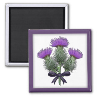 Purple Scottish Thistles with Tartan Plaid Bow Magnet