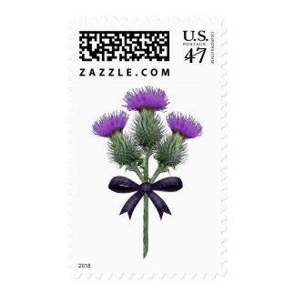 Purple Scottish Thistles with Tartan Plaid Bow Postage