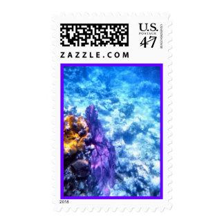 Purple Sea Fan Postage