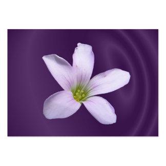 Purple Shamrock ~ ATC Large Business Cards (Pack Of 100)