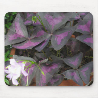 Purple Shamrock Mousepad