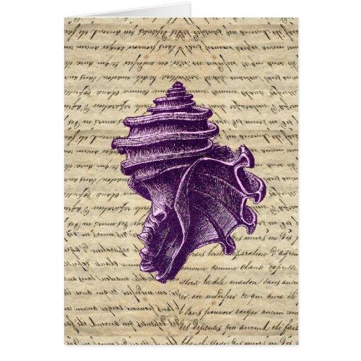 Purple shell on vintage letter  background cards