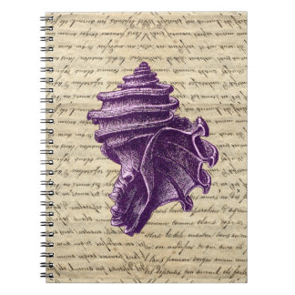 Purple shell on vintage letter  background note books