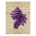 Purple shell on vintage letter  background postcards