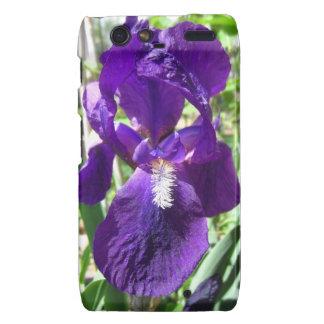 Purple Siberian Iris in the Garden Cover Droid RAZR Case