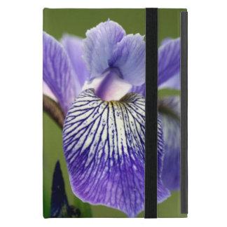 Purple Siberian Iris Covers For iPad Mini
