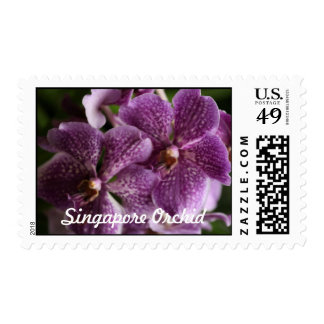 Purple Singapore Orchid  Matching Postage