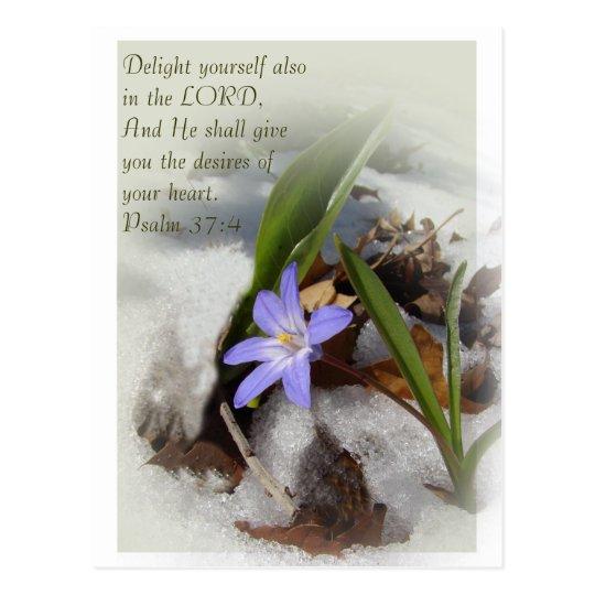 Purple snowflower postcard