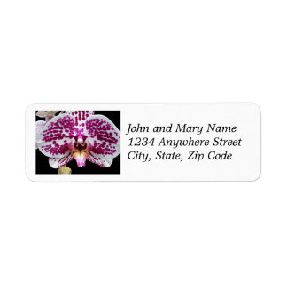 Purple Speckled Moth Orchid Floral Return Address Label