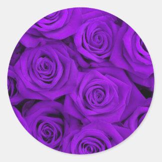 Purple Spectacular Roses Classic Round Sticker