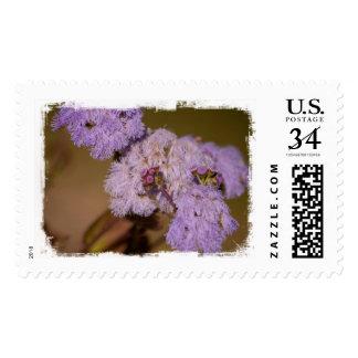 Purple Spiky Flower; No Text Stamp