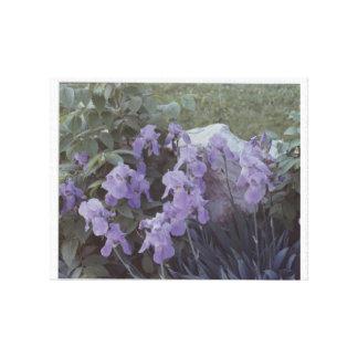 Purple Splendor on canvas